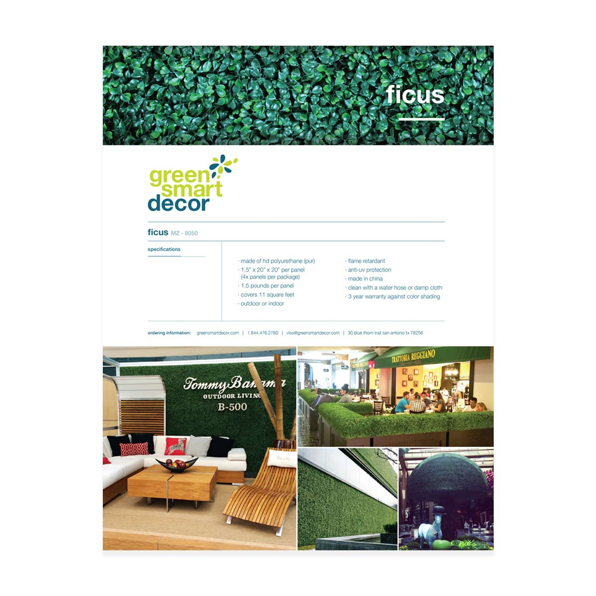 Greensmart catalog ficus page