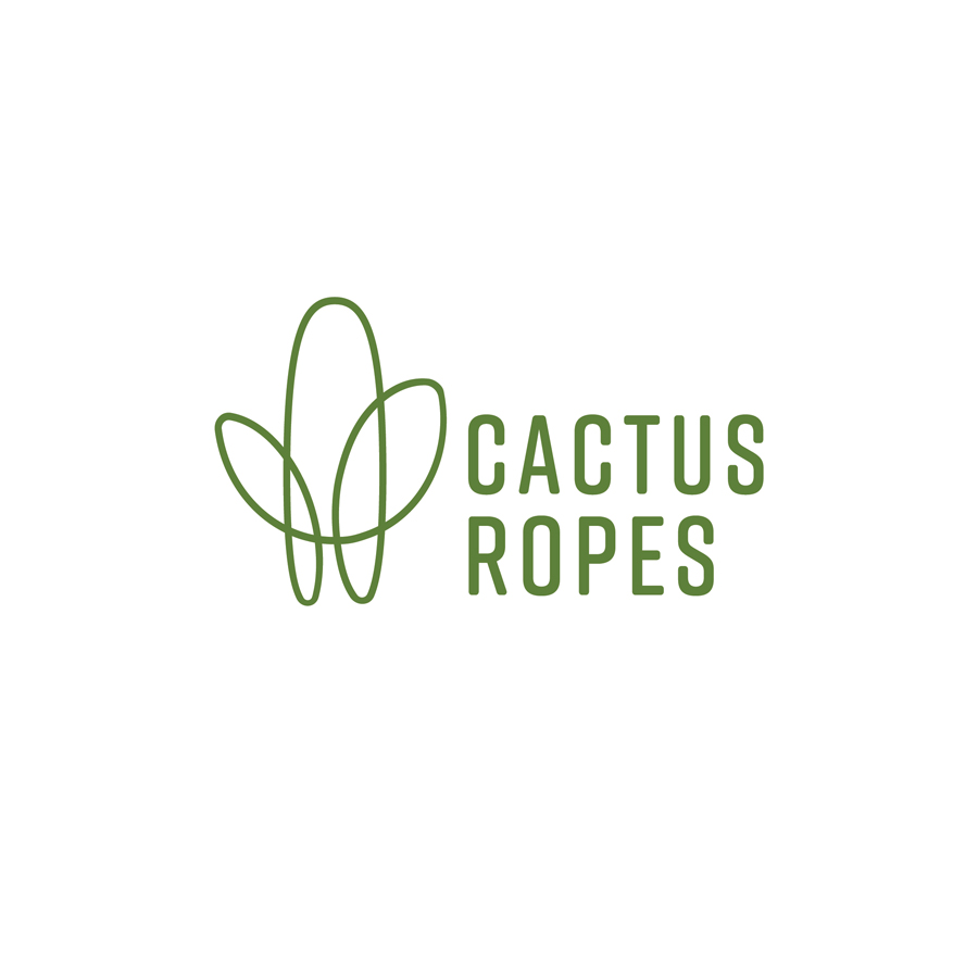 cactus ropes by abigail teets